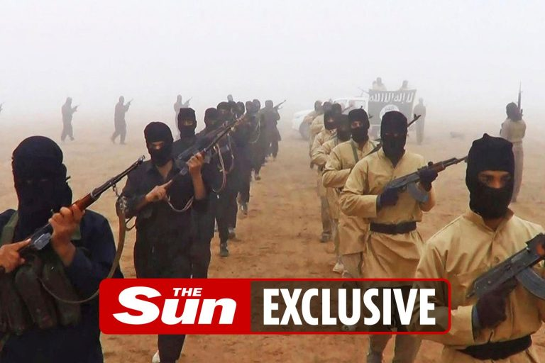 ISIS remains a threat to Britain 'because coronavirus has allowed terrorists to regroup'